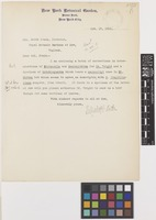 Letter from Mrs Elizabeth G.[Gertrude] Britton to Sir David Prain; from New York Botanical Garden, Bronx Park, New York City, [United States of America]; 17 Oct 1911; one page letter comprising one image; folio 41