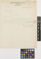Letter from N.L.[Nathaniel Lord] Britton to Sir David Prain; from New York Botanical Garden, Bronx Park, New York City, [United States of America]; 15 Jan 1906; one page letter comprising one image; folio 119