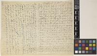 Letter from E.[Emmanuel] Bonavia to the Royal Botanic Gardens, Kew; from Etawah, [India]; 9 Feb 1886; eight page letter comprising four images; folio 134 – 135 NWI