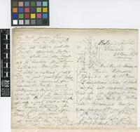 Letter from Henry Prestoe to Sir Joseph Dalton Hooker; from Botanic Garden, Trinidad; 26 May 1872; four page letter comprising two images; folio 441