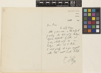 Letter from A.[Andrew Thomas] Gage to Sir David Prain; from Royal Botanic Gardens, Sibpur, Calcutta [Shibpur, Kolkata, India]; 23 Feb 1906; one page letter comprising one image; folio 62