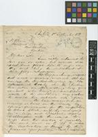 Letter from R.G. McHugh to Daniel Morris; from Castries, [St Lucia]; 1 Sep 1888; four page letter comprising four images; folios 404 - 405