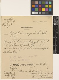 RBGK Memorandum; c.Aug 1887; one page memorandum comprising one image; folio 191