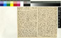 Letter from John Sanderson to Sir Joseph Dalton Hooker; from Natal, South Africa; 4 Feb 1867; two page letter comprising one image; folio 1349