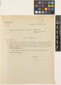 Letter from [Melchior] Treub to Sir William Thiselton-Dyer; from State Botanic Garden, Buitenzorg [Bogor, Java, Indonesia]; 13 Mar 1899; one page letter comprising one image; folio 135