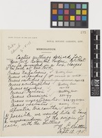 RGBK Memorandum from N.L.[Nathaniel Lord] Britton; 12 Sep 1911; one page item comprising one image; folio 175